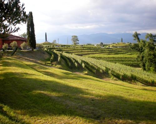 Rocca Bernarda - Friuli (2)